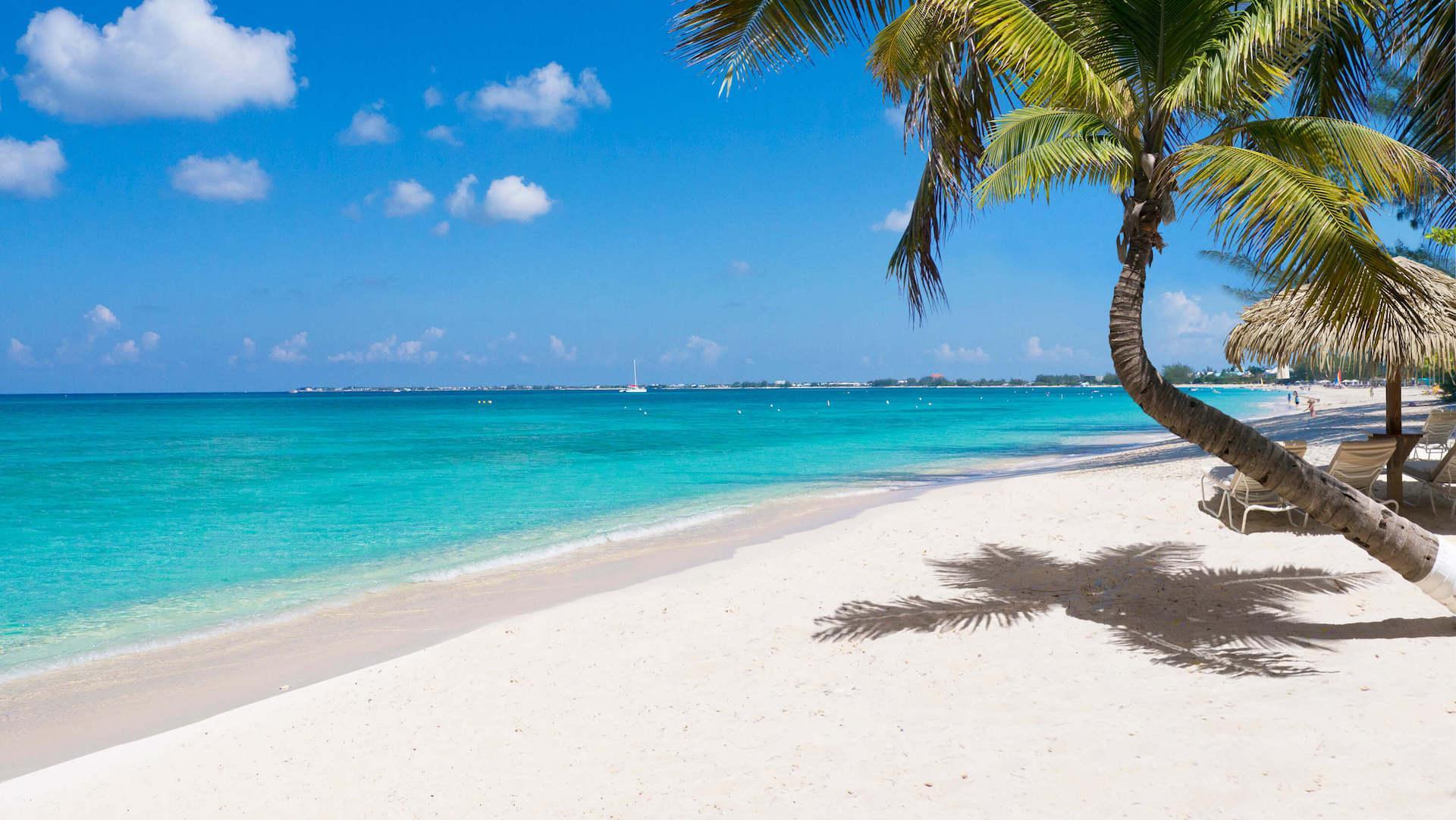 Los cinco mejores lugares para comer pescados y mariscos en las islas Caimán