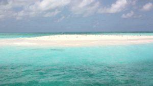 Turismo en Cairns: una ciudad mágica como puerta de entrada a la Gran Barrera de Coral