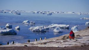 Se podrá viajar de Argentina a la Antártida en vuelos comerciales a partir de 2018