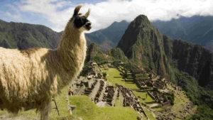 Cada vez más turistas eligen Perú: en la primera mitad del año, creció el número de visitantes