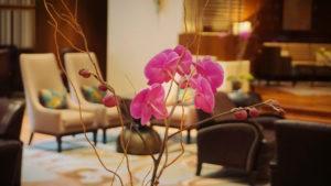 REVIEW JW Marriott Mexico City, un hotel de lujo clásico con servicio preferencial