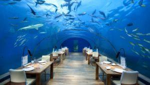 Inaugura el restaurante subacuático vidriado más grande del mundo