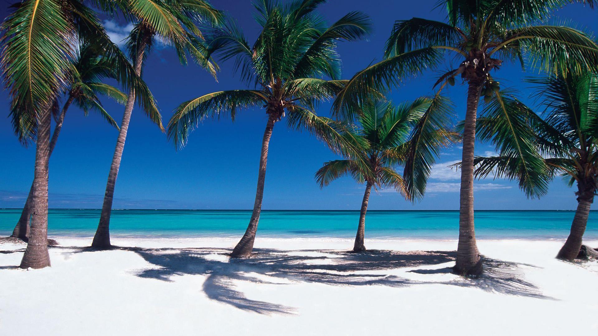 Punta Cana es el destino número 1 elegido por los estadounidenses en 2017