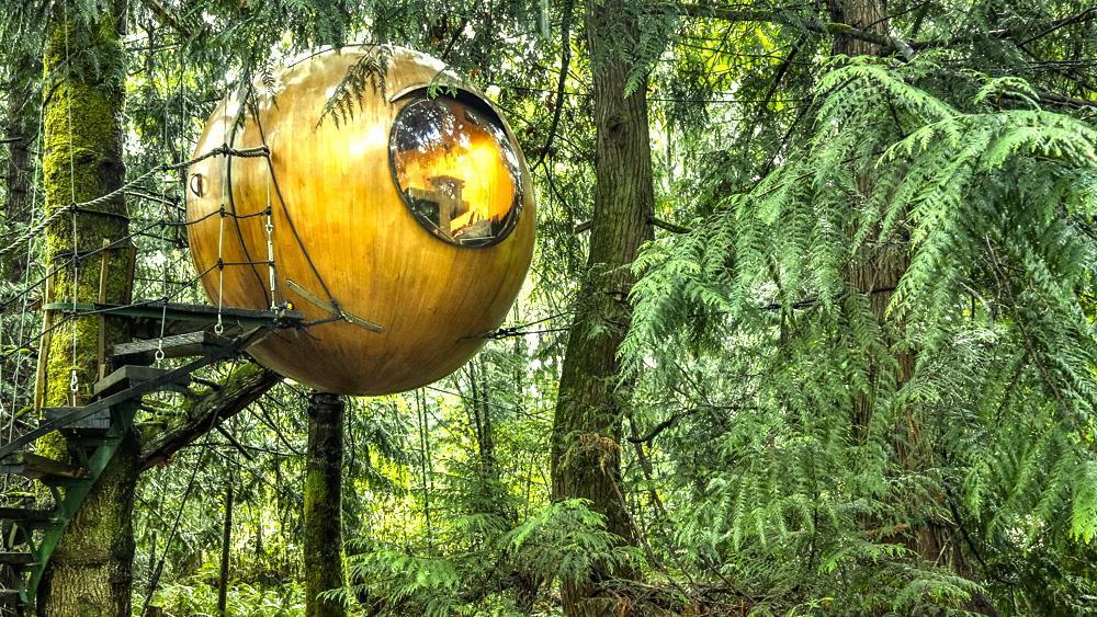 ¿Dormir en una esfera sobre un árbol? Ahora es posible