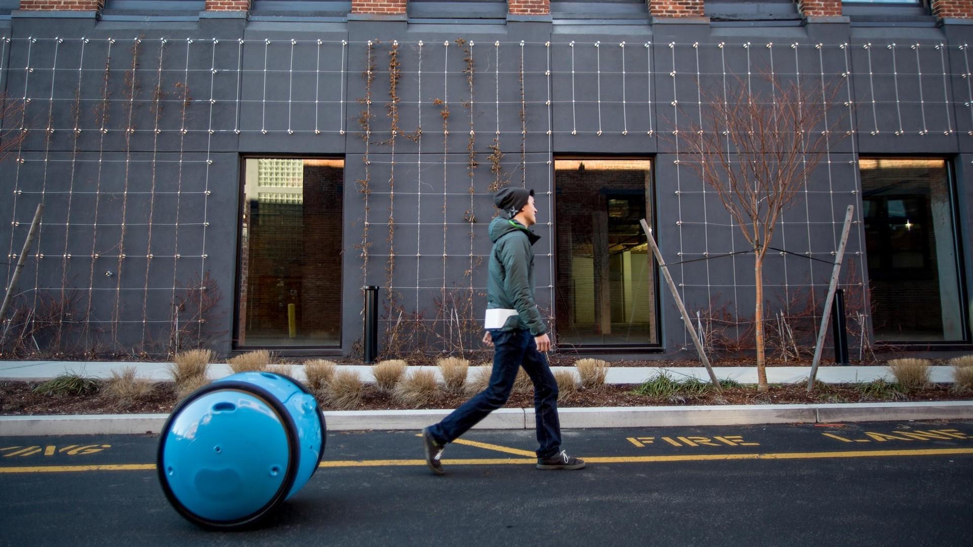Vespa lanzó un robot que pasea a las mascotas y transporta las compras: Gita