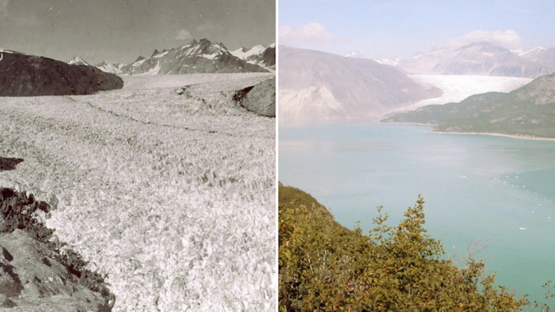 Cambio climático: las imágenes que muestran cómo está el planeta