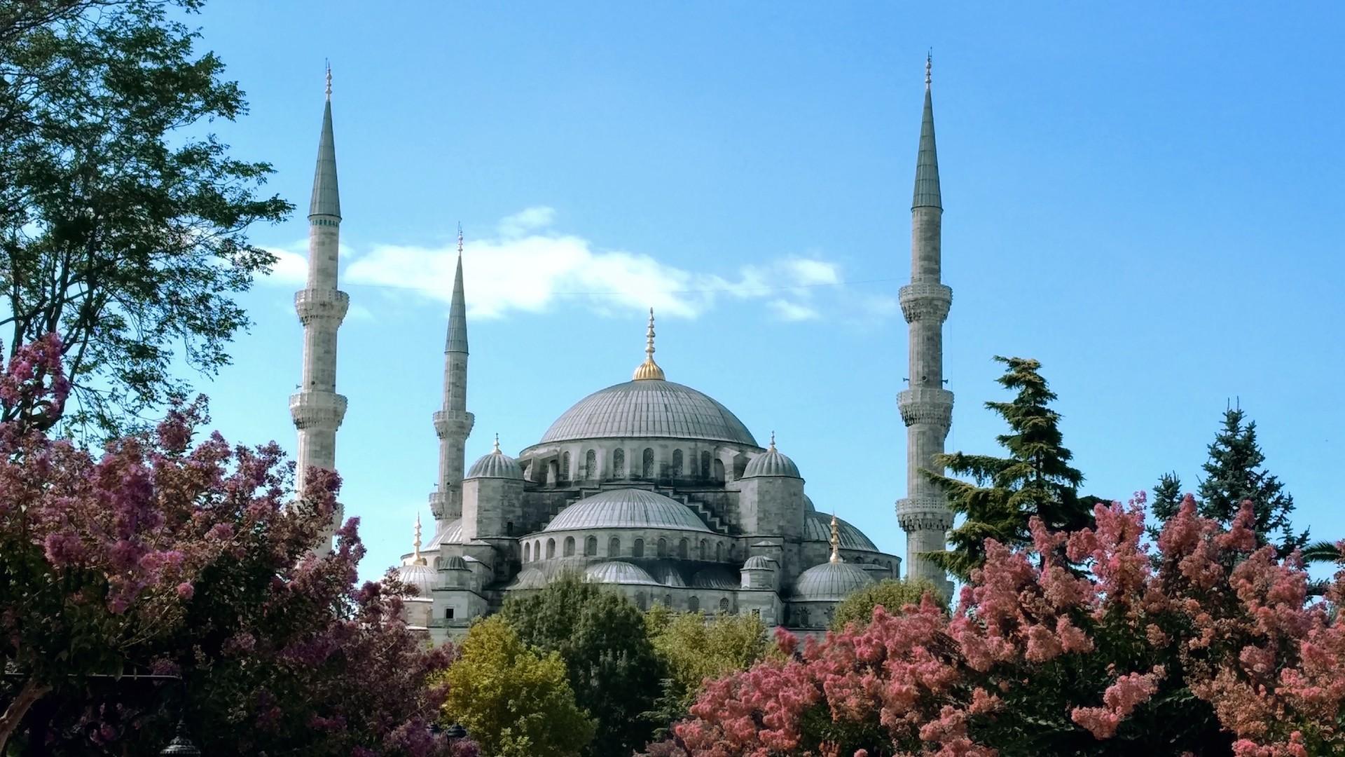Cinco propuestas imperdibles para una estadía express en Estambul