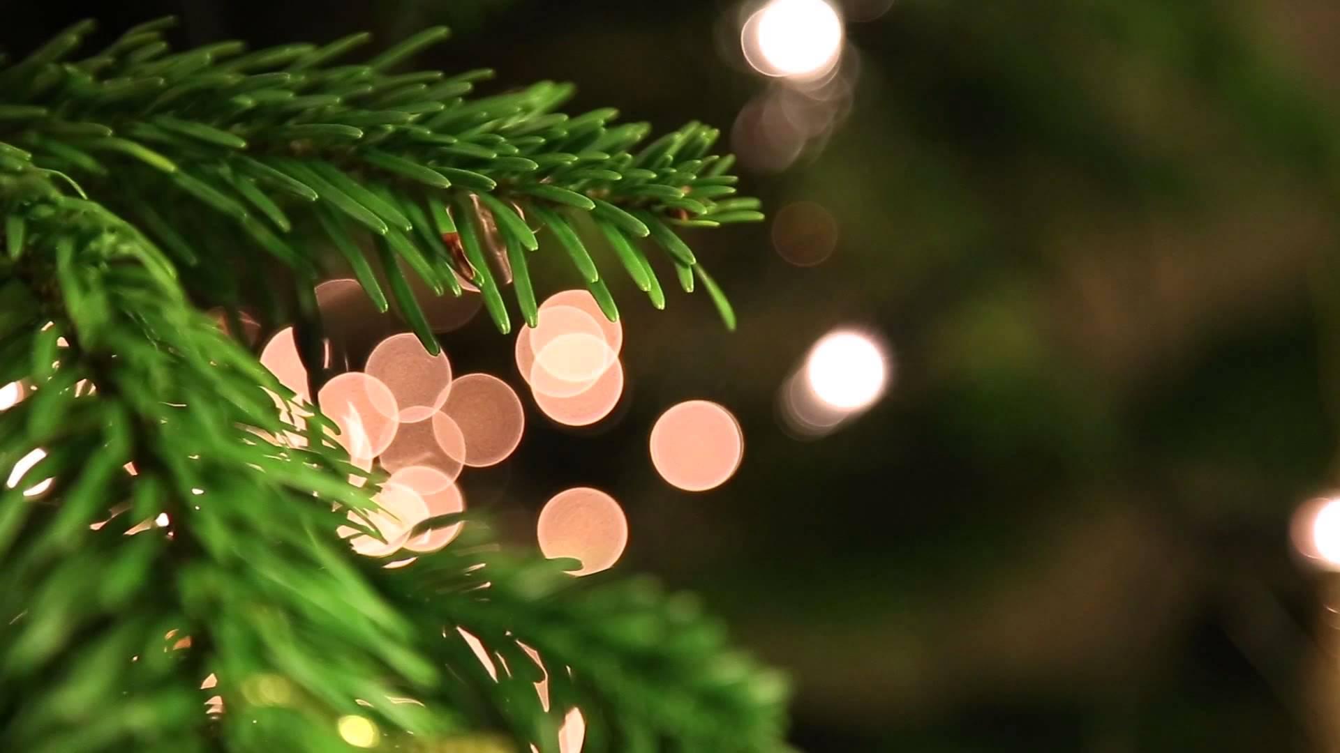 El aeropuerto de Beirut retiró su polémico árbol de Navidad