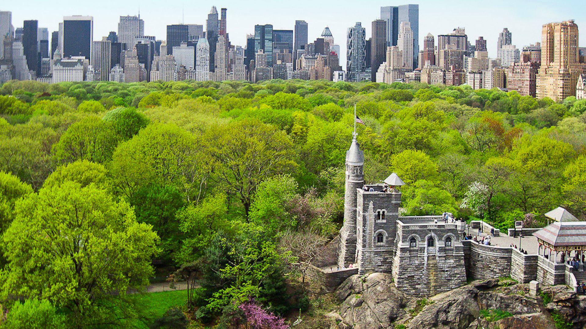 El Central Park de Nueva York completamente libre de autos