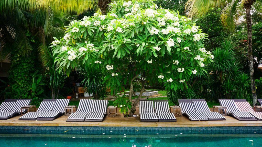 REVIEW Hotel Santa Teresa Rio MGallery by Sofitel: un hotel boutique para vivir una Río de Janeiro diferente