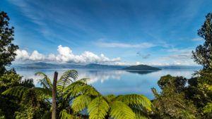 Estas son algunas de las islas más idílicas de Nueva Zelanda