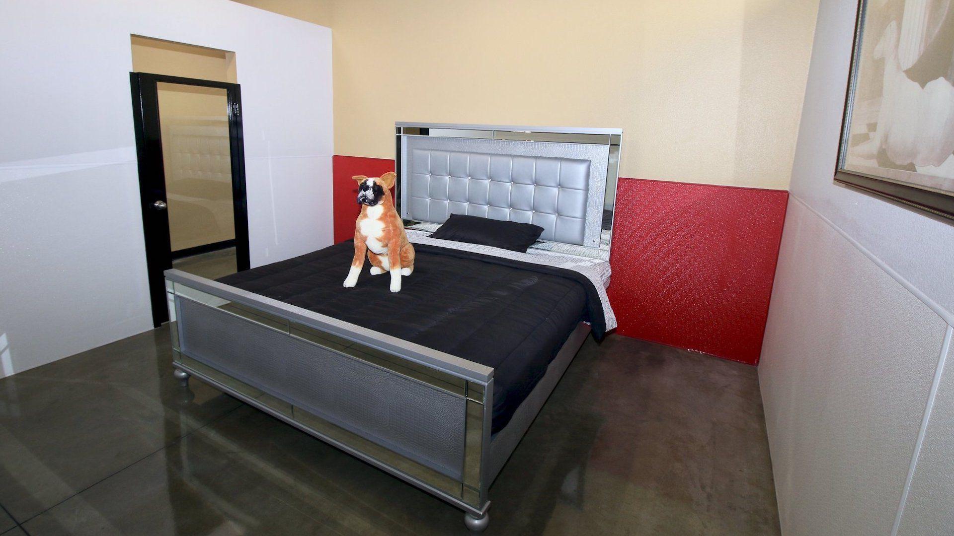 Un hotel cinco estrellas exclusivo para perros