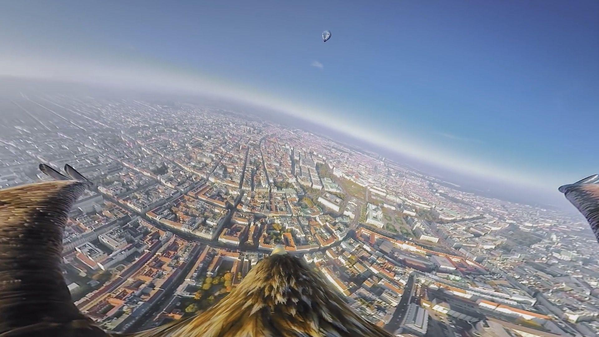 El increíble video panorámico de Viena filmado por águilas