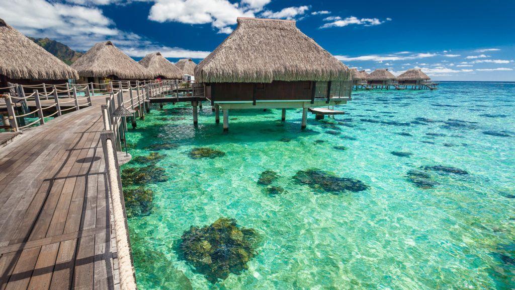 United le regalará un viaje a Tahití a quien sea adicto al trabajo