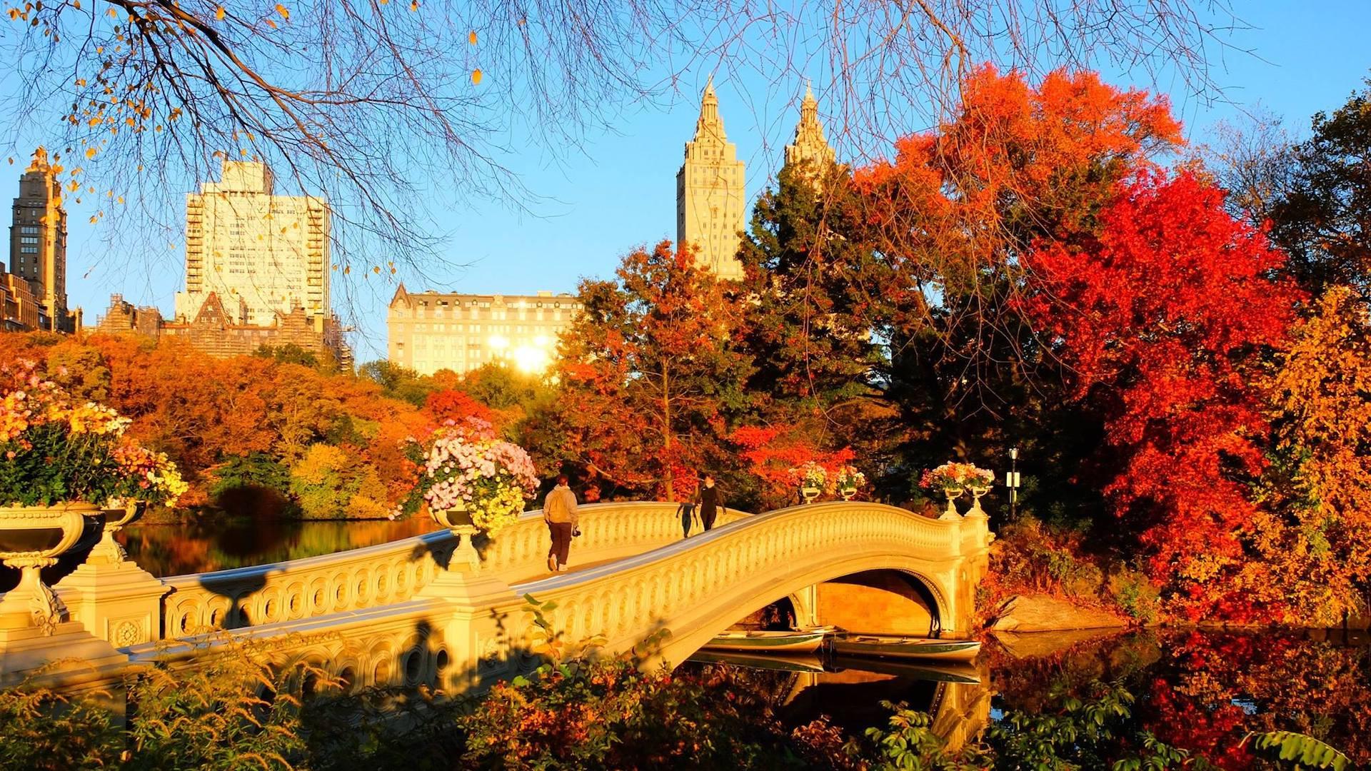 Seis razones para visitar Nueva York en otoño
