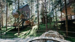 Las nuevas casas en el árbol en el parque nacional más espectacular de Croacia