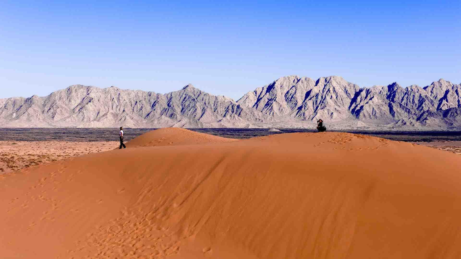 Así es Sonora, el desierto más grande de Norteamérica