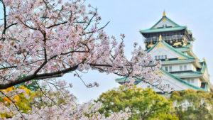 El mejor momento para viajar a Japón en 2019  para ver los cerezos en flor