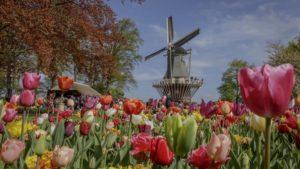 Cuatro destinos para elegir esta primavera en Europa
