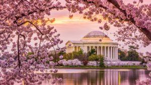 Tres razones para viajar a Estados Unidos en primavera