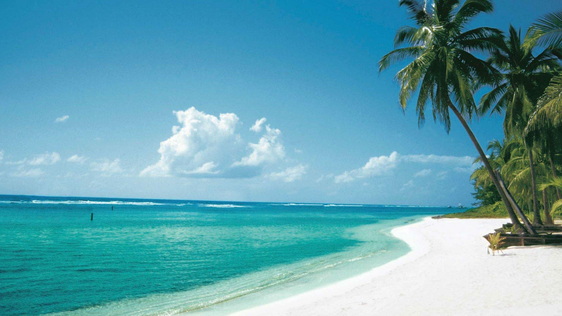 Cinco razones para visitar las Islas Caimán