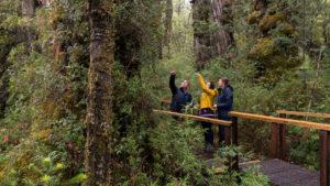 Los mejores lugares para hacer ecoturismo en Chile