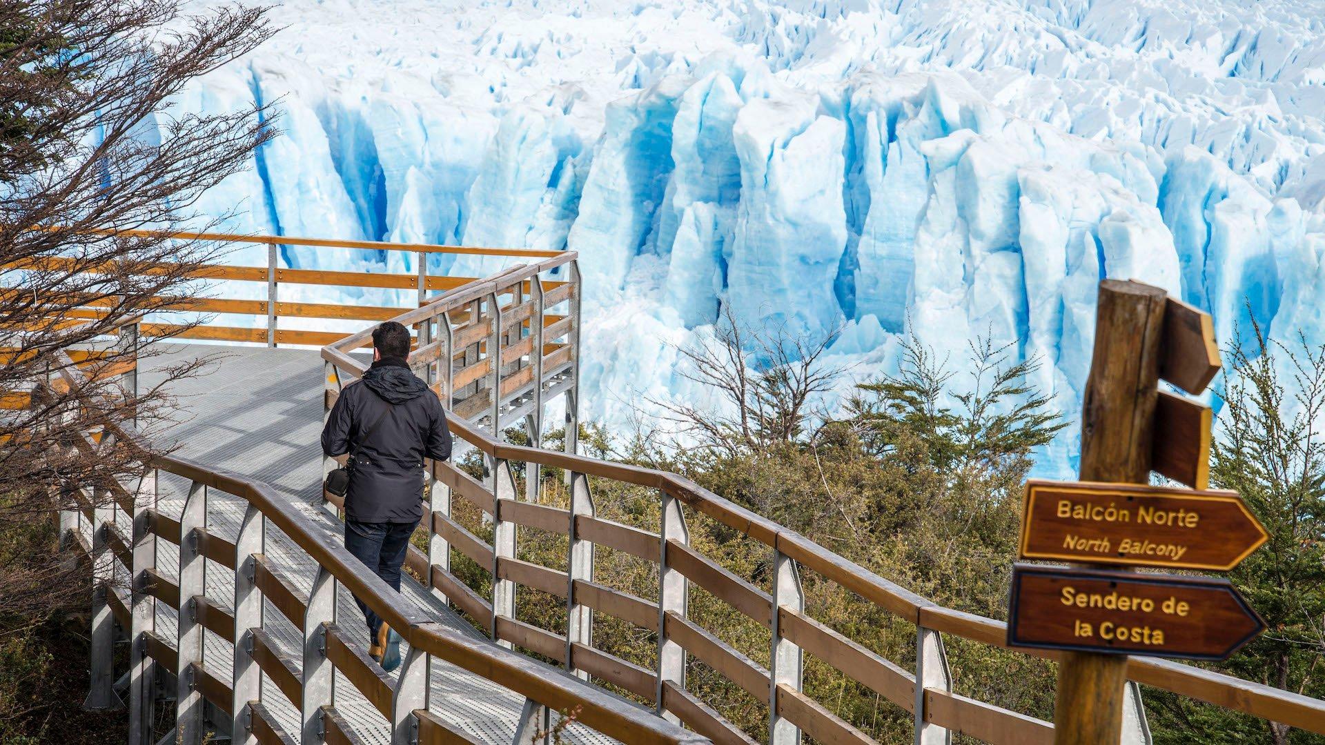 Las mejores cosas para hacer en Calafate: de la estepa al bosque de hielo