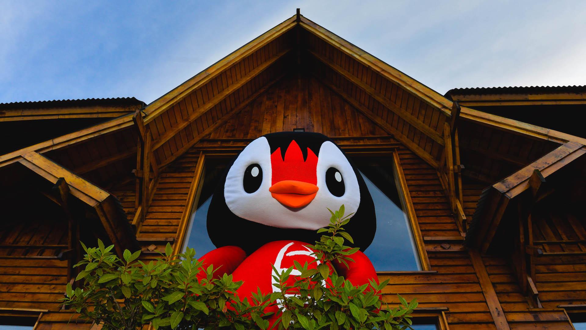 Usupin: esta es la mascota oficial de Ushuaia, uno de los mejores destinos de Argentina
