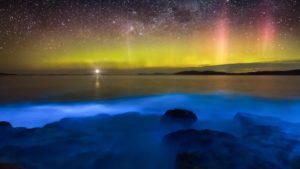 Los espectáculos naturales de bioluminiscencia en Chile