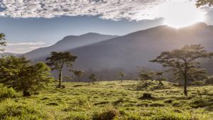 Cinco destinos imperdibles de visitar en Colombia