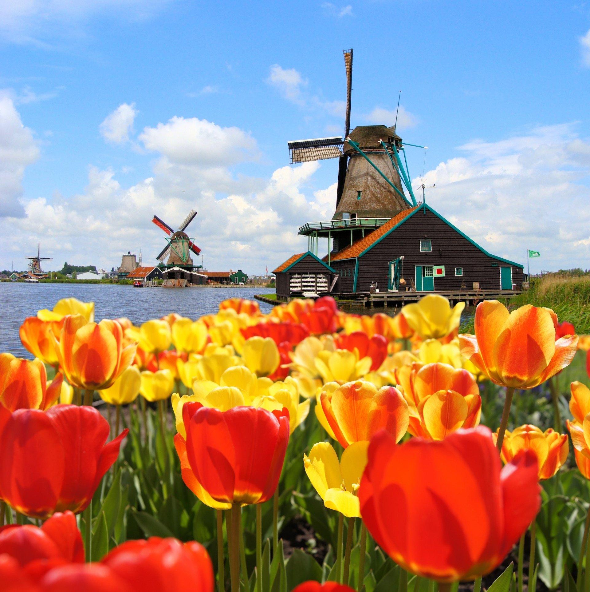 Holanda deja de usar ese nombre y el oficial es Países Bajos