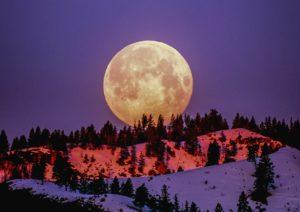 ¿Cuándo veremos la próxima Luna Llena? Calendario espacial 2020