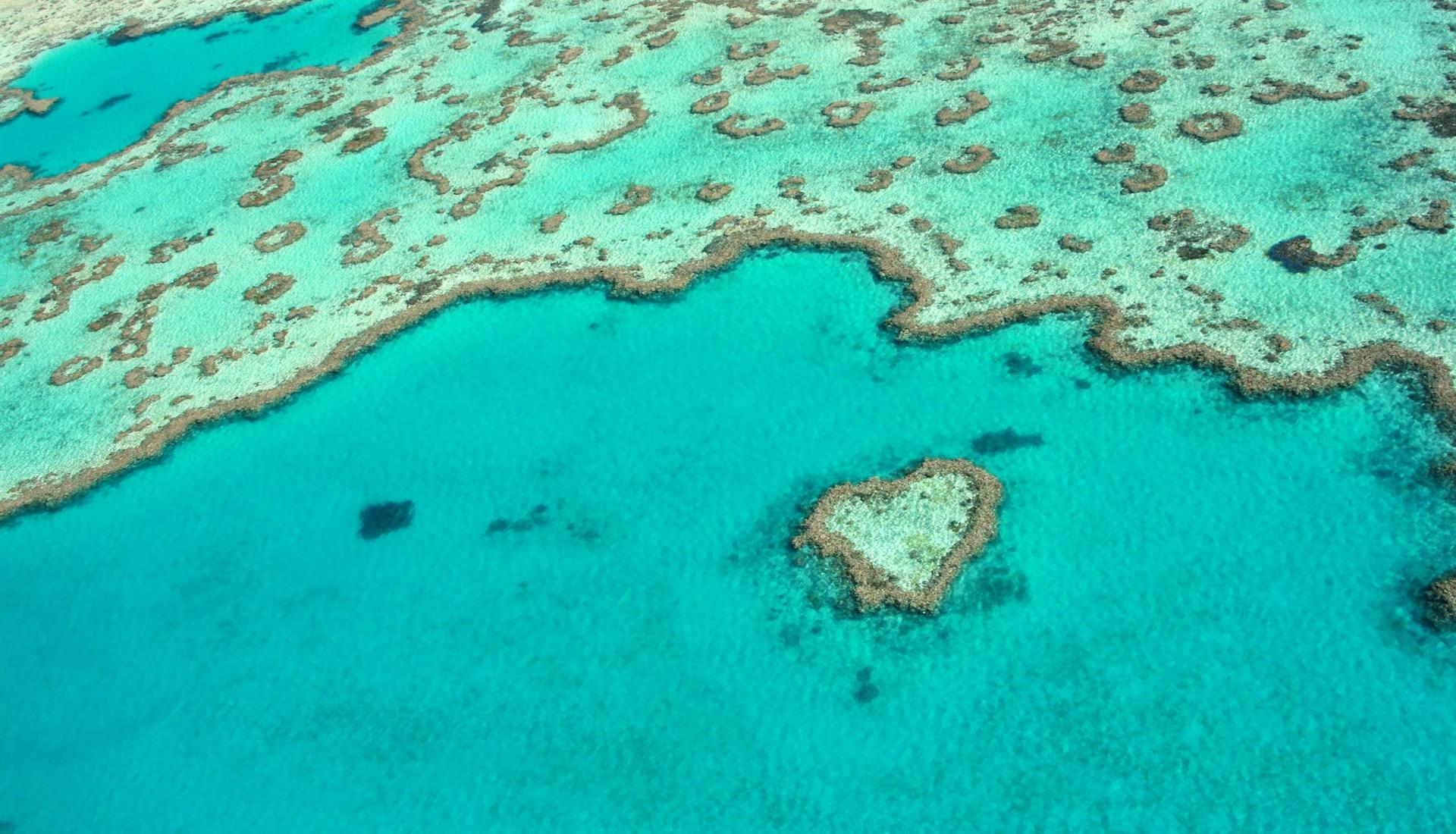 El emotivo video de Australia para cuando podamos volver a viajar