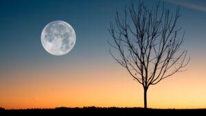 La próxima luna llena llega este 5 de julio: Buck Moon