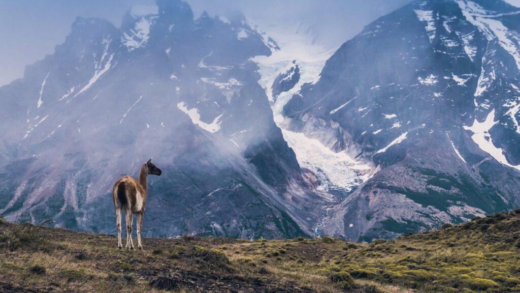 Estos son los parques nacionales de Chile