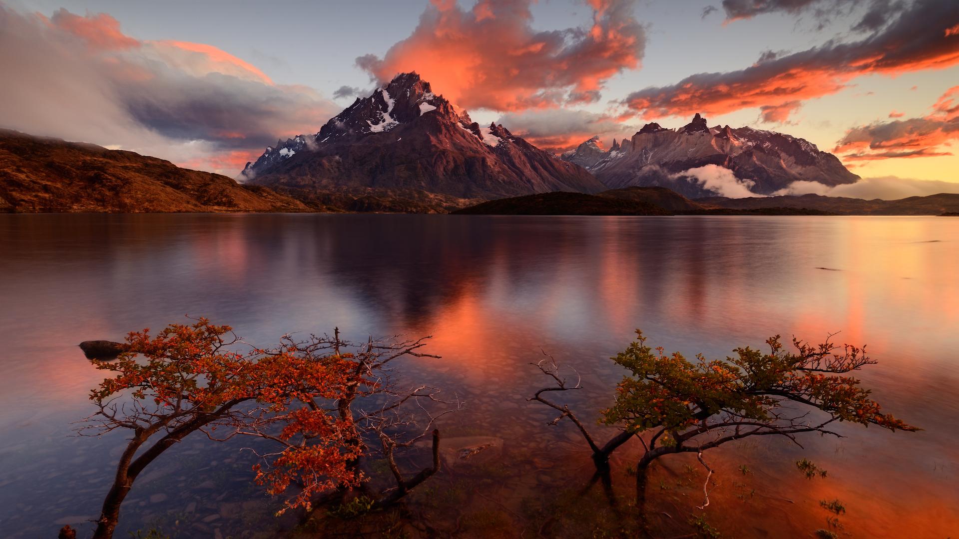 Estos son los trámites para viajar a Chile para extranjeros