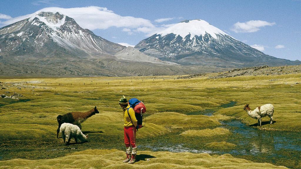 Se puede viajar a Chile: el país reabre sus fronteras a turistas extranjeros