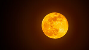 La Luna Llena de noviembre llega con un eclipse lunar