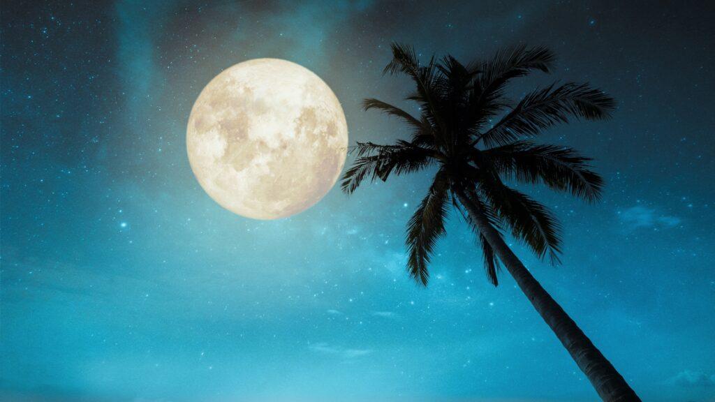 El 29 de diciembre, llega la última Luna Llena de 2020
