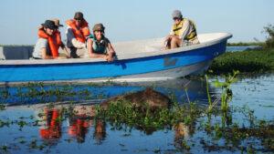Turismo en Argentina: reabre el Parque Nacional Iberá en Corrientes