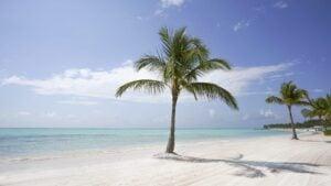 Viajes a República Dominicana: ¿Qué hacer en Punta Cana?