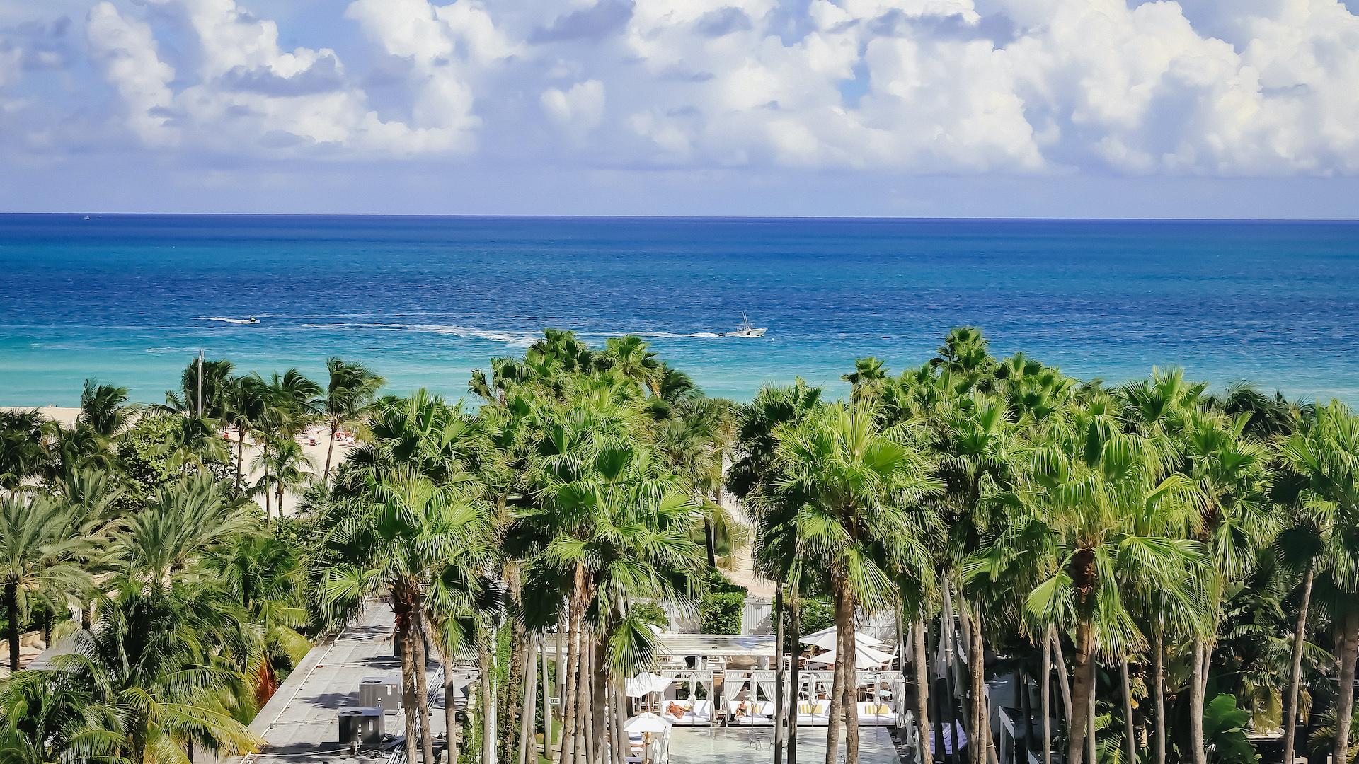 Los mejores hoteles en Miami: South Beach vs. Brickell y más