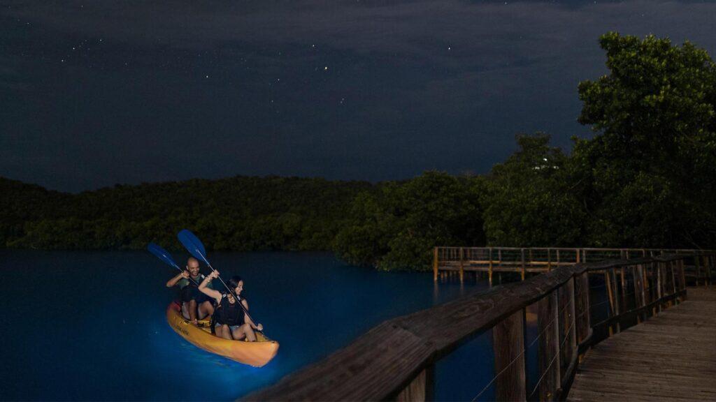 Viajar a Puerto Rico y un gran atractivo: bahías bioluminiscentes