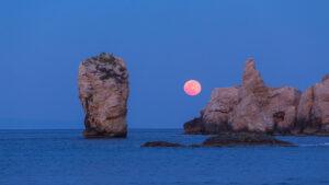 El 26 de abril llega la Super Luna Llena Rosa: Full Pink Moon