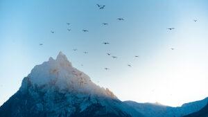 Cuáles son las principales rutas de trekking en Tierra del Fuego: video