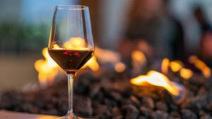 Se celebra el Día Mundial del Malbec: ¿cuál es el origen de este vino?