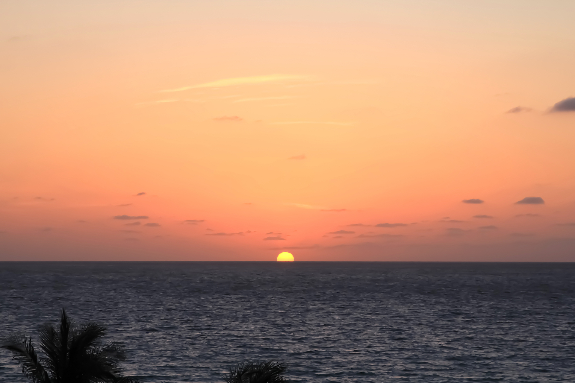REVIEW Hotel Acqualina Resort Sunny Isles: lo mejor de Miami