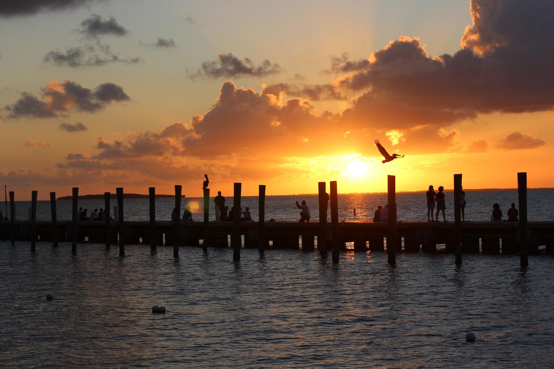 Qué hacer en los Cayos de Florida: más para hacer en Miami