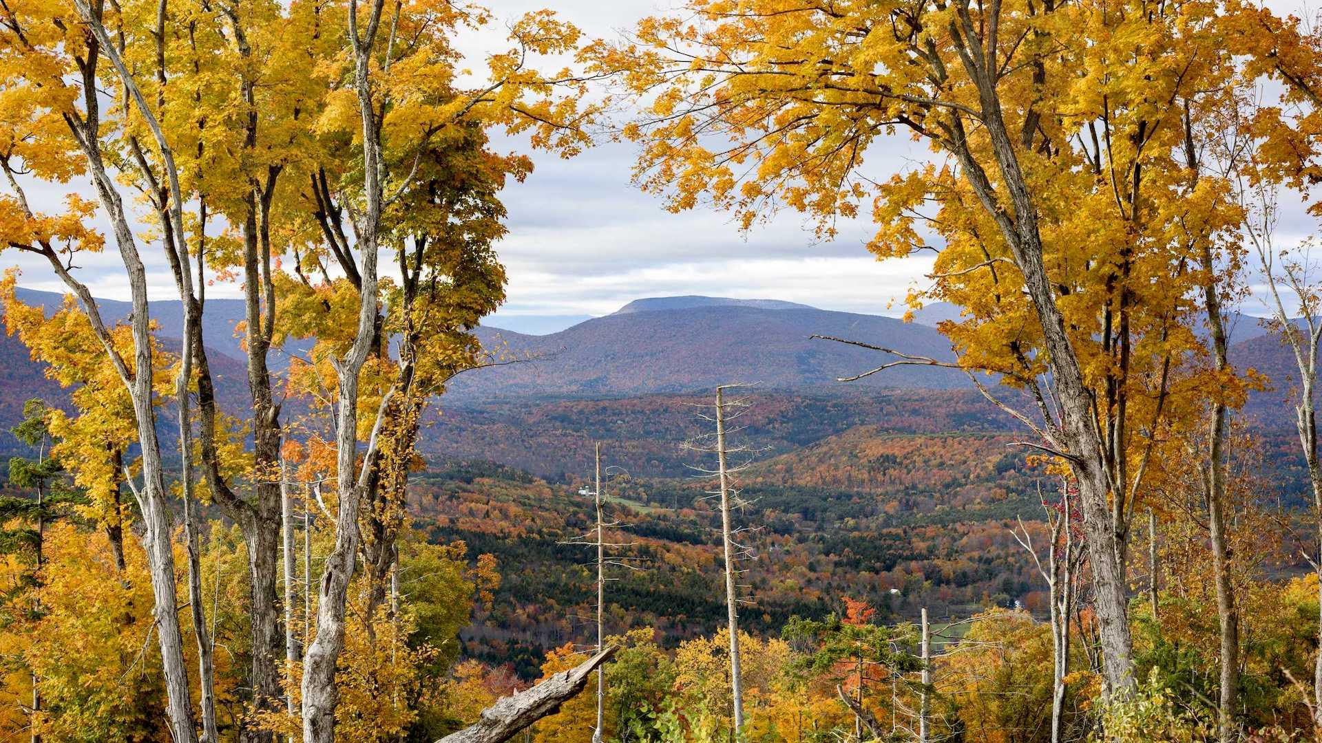 ¿Qué hacer en Nueva York más allá de Manhattan? Montañas en Catskills