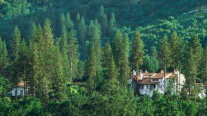 ¿Dónde alojarse en el Parque Yosemite? En el hotel Château du Sureau